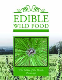 Monthly Edible Plant