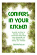 Conifers in the Kitchen