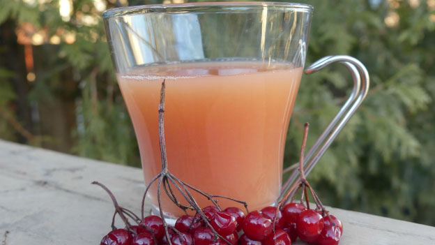 Highbush Cranberry Juice