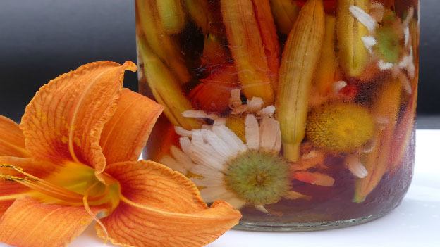 Spicy Pickled Daylilies and Daisies