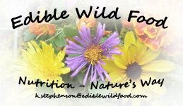 Edible Wild Food