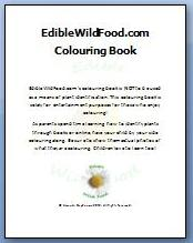 Wild Edible Colouring Book