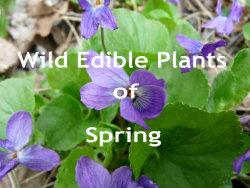 Spring Edibles