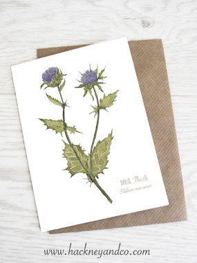 Milk Thistle artcard