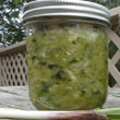 Fermented Wild Food Recipes