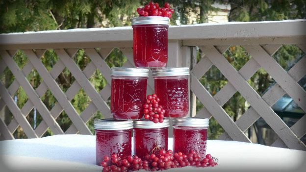 Highbush Cranberry Jelly