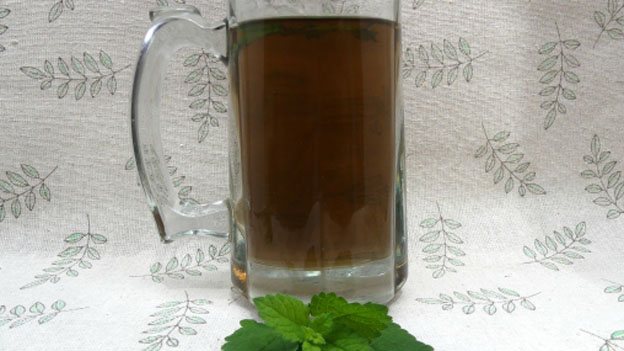Lemon Balm Ice Tea