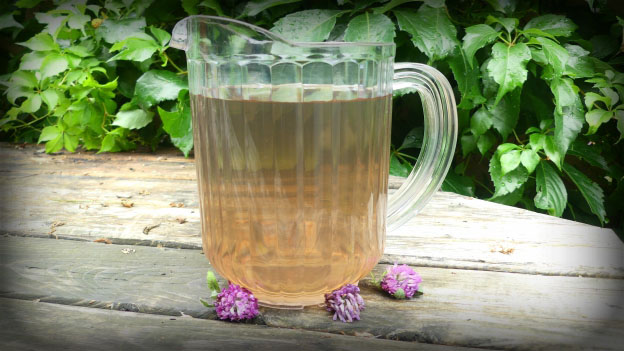 Red Clover Ice Tea
