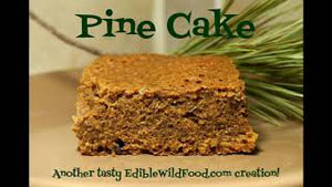 How to Make Pine Cake